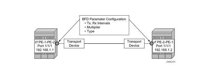 Bi-Directional Forwarding Detection