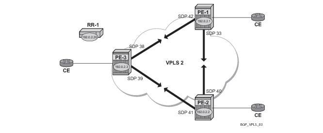 BGP VPLS