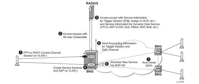 RADIUS-Triggered Dynamic Data Service Provisioning